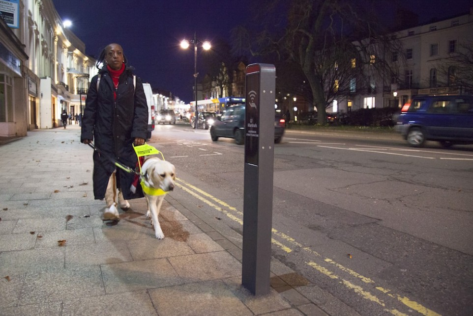 Road safety_guide dog
